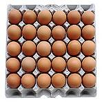(냉장)계란
